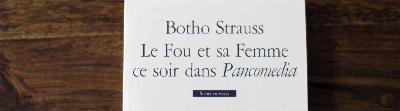 Die französische Übersetzung des Strauß-Stücks erschien 2002